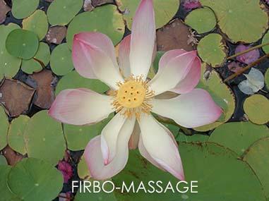 Fibro massage
